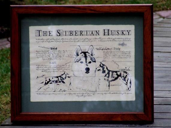 Antique styled dog standard - Siberian Husky