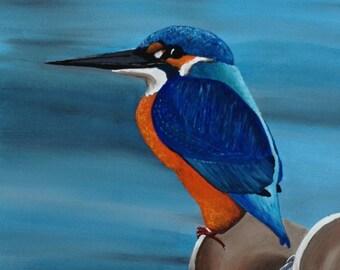 Kingfisher of Brixham