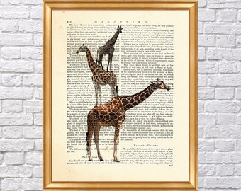 Giraffe Family, Giraffes from wild Art Print, Dictionary Poster, Wall Decoration, Book Page Print, Decor