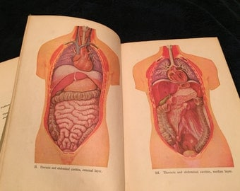 2 Hard cover Antique Medical Books (with illustrations)