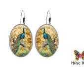 Vintage Peacock earrings - One inch (25 x 18mm) oval photo under glass silver plated leverback colorful peacock earrings