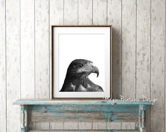 Bird Eagle print, Nursery wall art bird, Eagle art, Kids Room decor, Nursery decor 8x10, nursery prints, Bird of Prey, Black and White Photo