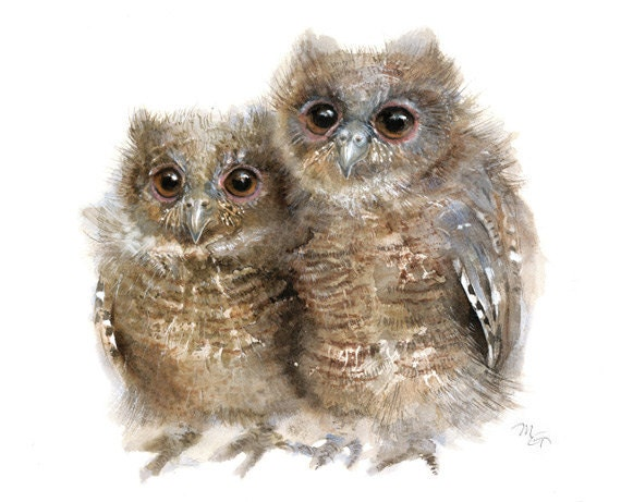 Owl watercolor - Baby Owls Giclee Print - Nursery Decor - Young  Owls Illustration - Owl Watercolor Art Print