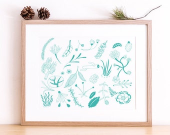 Art print A4 - Plants - Botanical - Serie West -  Limited Edition of 50