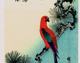 "Japanese Ukiyo-e Woodblock print, Ando Hiroshige, Flowers, Birds, Winds, Moon ""Parakeet & Pine"""
