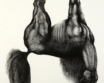 Glue Horse - Lithograph