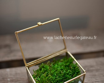 Glass box Golden engagement ring or alliances - showcase - ring cushions