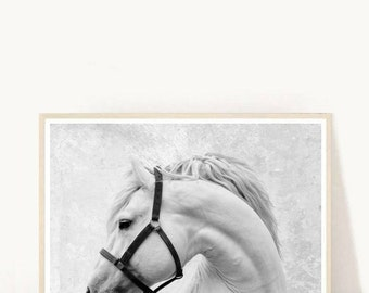 Horse Art Print, Horse Print, Horse Photo, Printable Art, Black And White Horse, Textured, Wall Decor, Wall Art, digital Download