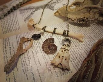Ammonite & Bone Necklace, Oddities, Curiosities, Bone Jewelry, Taxidermy Jewelry, Vulture Culture