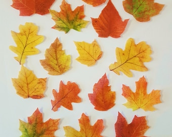 Edible Fall Leaves, Wafer Paper Toppers for Cakes, Cupcakes, Cookies or Drinks, Wedding Cake Decorations - Color on One Side