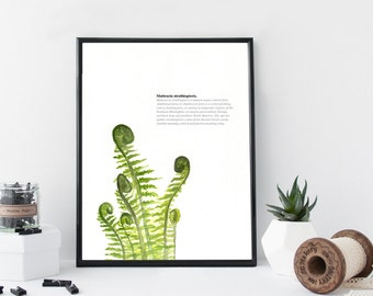 Fern watercolor art print, botanical print, nature leaf art poster, modern wall decor, home wall art, apartment decor, gift idea,