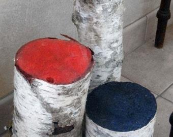 Colourful birch, birch, logs, logs, birch, birch colored