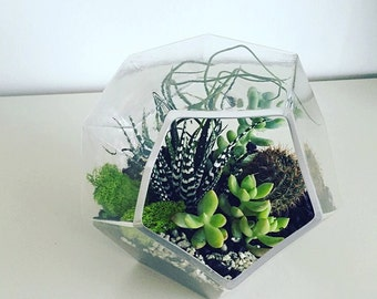 Varying GeoMetric Terrariums