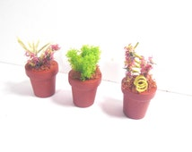 Set of 3 Faux Teeny Tiny Plant Pots with Plants for Fairy Garden, Dolls Houses, Minatures.