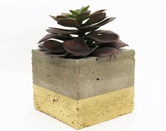 Metallic Concrete Paint Springfield Il