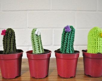 Crochet Cactus - Tall