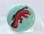 Platypus Button Pin / Turquoise Button Pin / Animal Button Pin / Decorative Hat and Bag Accessory