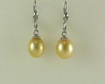 Freshwater Golden 8.5 x 9.7 mm Pearl Earring 14k White Gold