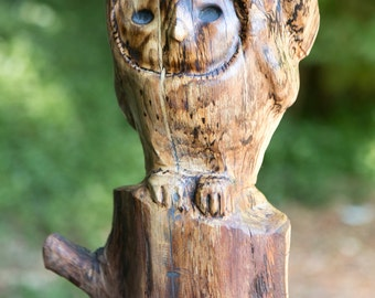 Owl with Chick - Spelted Oak wood sculpture