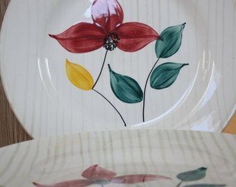 French vintage plates