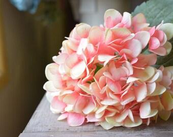 Splendid Hydrangea in pink -ITEM020