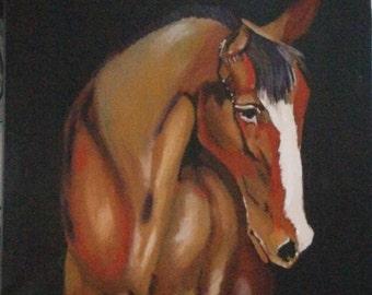 "Original oil painting ""Horse portrait"""