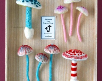 Print: Mushrooms - needlefelting sculpture fibre toy specimen felt plush photo wall decor woodland nature forest