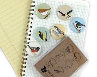 Wild Bird Magnets--California Hills Birds--Set of 6