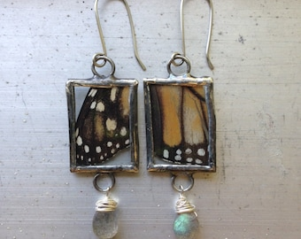 Monarch Butterfly Wing Labradorite Earrings
