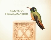 letter x print, hummingbird photo, nursery art, nursery decor, childs room decor, child room art, letter art, alphabet photo, alphabet art