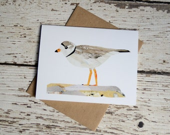 Piping Plover Greeting Card of Original Collage