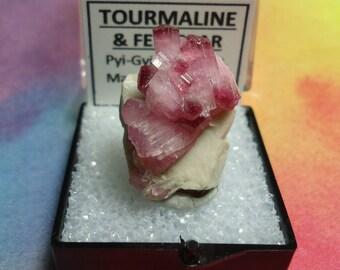 Sale TOURMALINE On FELDSPAR Rare Bicolor Pink Rubellite Terminated Crystal Cluster In Perky Mineral Specimen Box Rare Old Stock