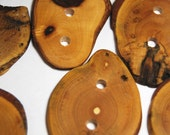 Handmade Tree Branch Wood Buttons, Natural Wooden Buttons, Ash and Oak in Multiple Sizes, Set of 6