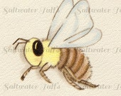 Honey Bee Digital Downloads  Image Vintage Card bumble bee bee mine valentine image insect happy buzz wings 1.50 downloads jpg stripe fly