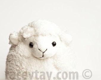 Lamb Art Print, White, Baby Neutral Nursery Decor, Toy Lamb, Nursery, Cute, Lamb Decor