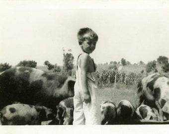 "Vintage Photo ""Bacon Boy"" Kid Hog Farm Pig Snapshot Photo Old Antique Photo Black & White Photograph Found Paper Ephemera Vernacular - 162"