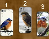 Bluebird Photo Phone case,cute Eastern Bluebird phone case,ipad case,unique photography,nature photography,iPhone case,Samsung Galaxy case