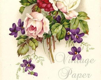 Pink Roses & Violets Antique French Postcard, Chromolithograph Flower Bouquet Post Card from Vintage Paper Attic