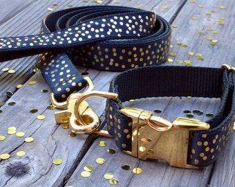 Black and Gold Dog Collar - Gold Confetti, Metallic Gold Dog Collar, Metal Buckle Dog Collar, Fancy Dog Collar