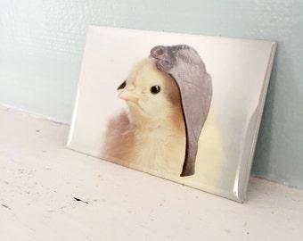 Chicks in Hats Chicken Wearing An Aviator Cap Rectangle Refrigerator Magnet Baby Bird