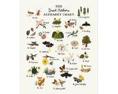 The Great Outdoors Alphabet Chart - 11x14 Art Print