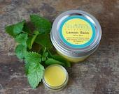 Lemon Balm Lip Salve, Cold Sores, SET of 2 Herpes Herbal Salves, Fever Blister Lip Balm, Anti-viral, Natural Cold Sore Remedy, Organic Salve