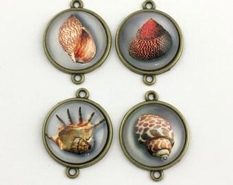 4 shell glass connector,bronze tone ,22mm  x 29mm #CON 098