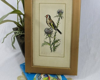Vintage Hand Colored Print Finch on Thistle Framed Art Aviary Watercolor Gold Framed Cottage Chic