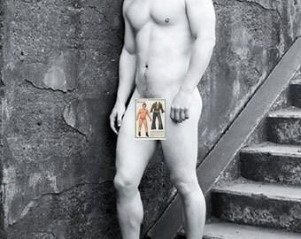 Bushnell IL Single Gay Men