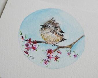 watercolor my little bird