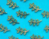 "Fern and Laurel Branch 1"" Enamel Pin - Gold Turquoise Aqua Cute Lapel Pin"