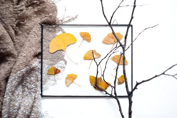 Panneau de verre avec automne feuilles feuilles pressées décor à la maison botanique herbier ginkgo sticker