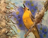 Prothonotary Warbler Orig...