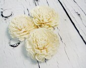 "Sola Flowers, Wedding Flowers white ivory diy bouquet floristic supply natural flowers rustic belly 12 pcs 8cm 3 5⁄32"" natural decor florist"